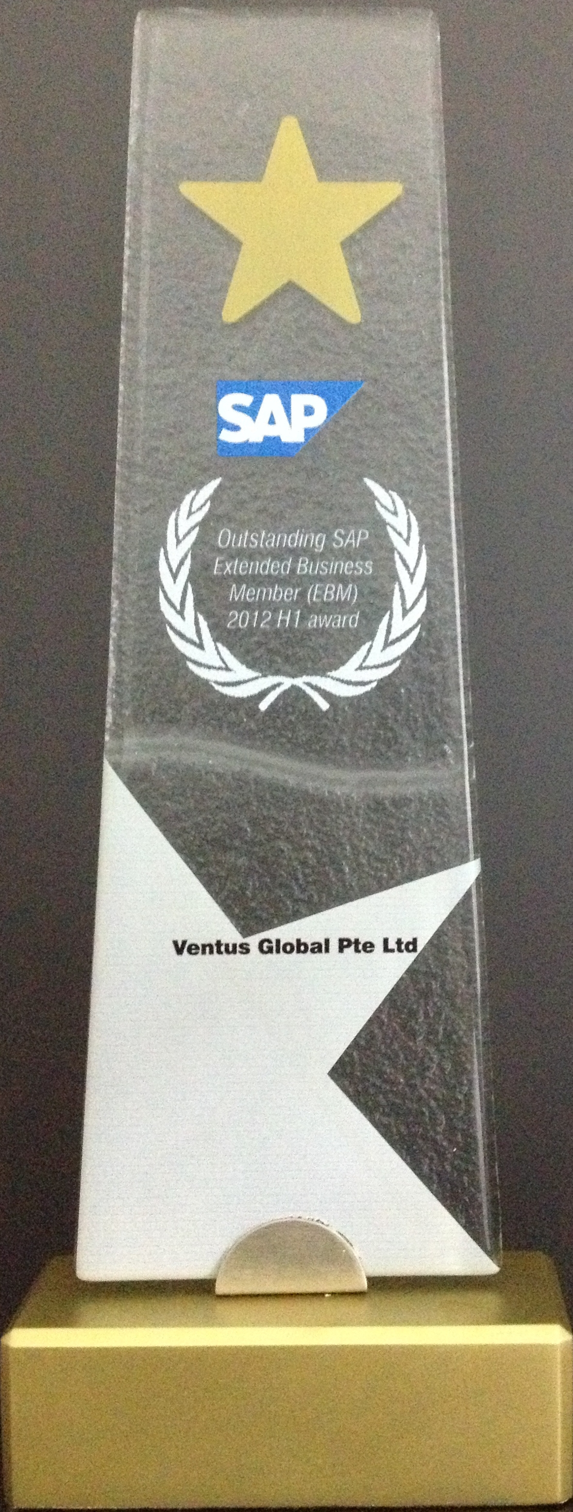 Ventus Global Wins SAP Award.